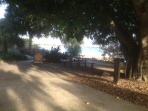 Rest Area Image 2